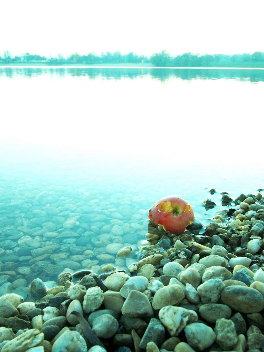 Forbiden beauty on the lake