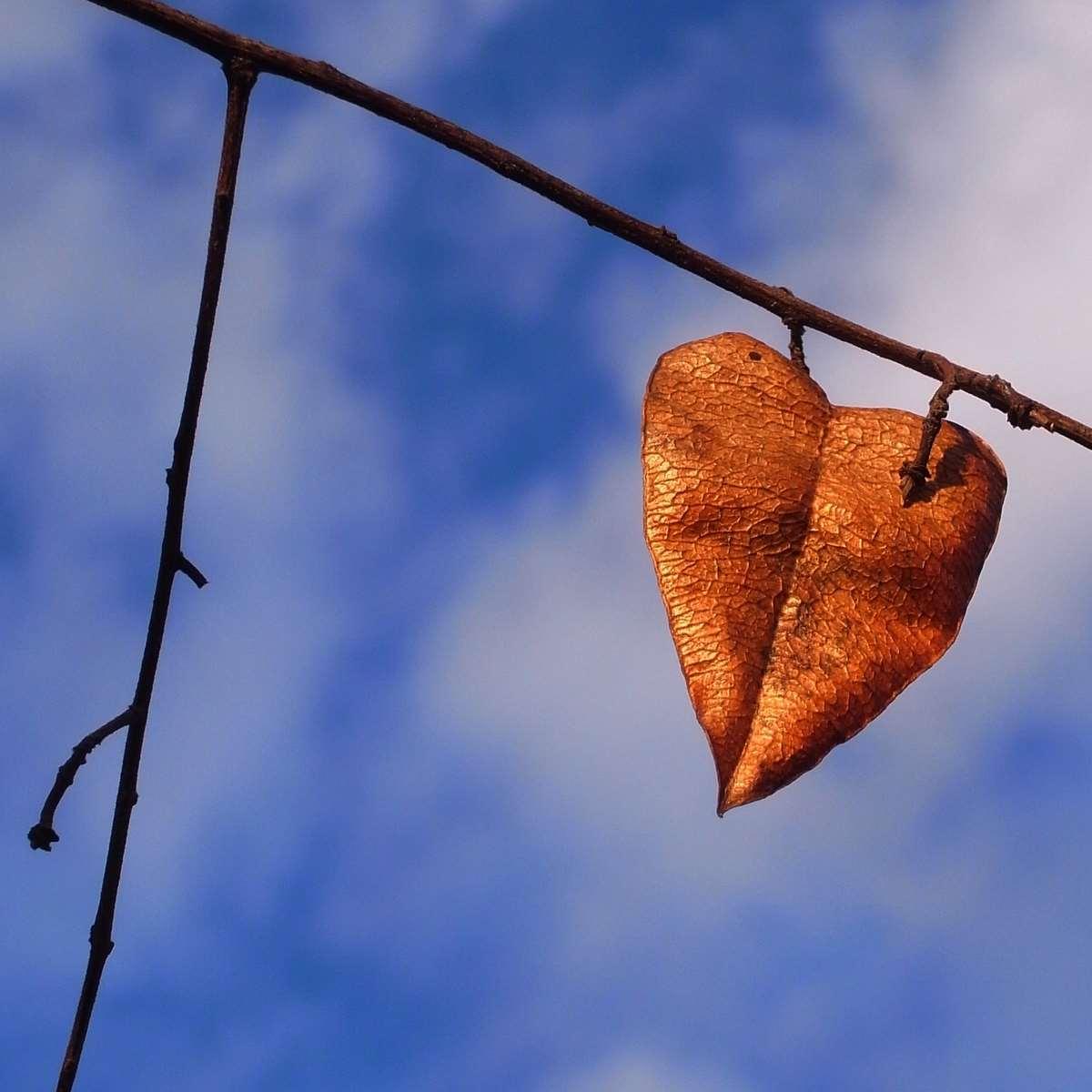 Gold Heart in Autumn Blue