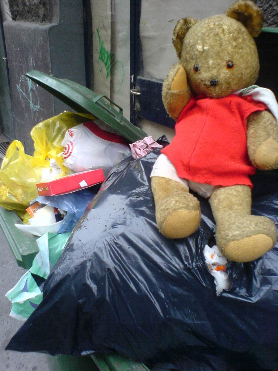 Teddy Bear in & The trash memories
