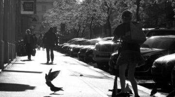 Zagreb City afternoon -BW