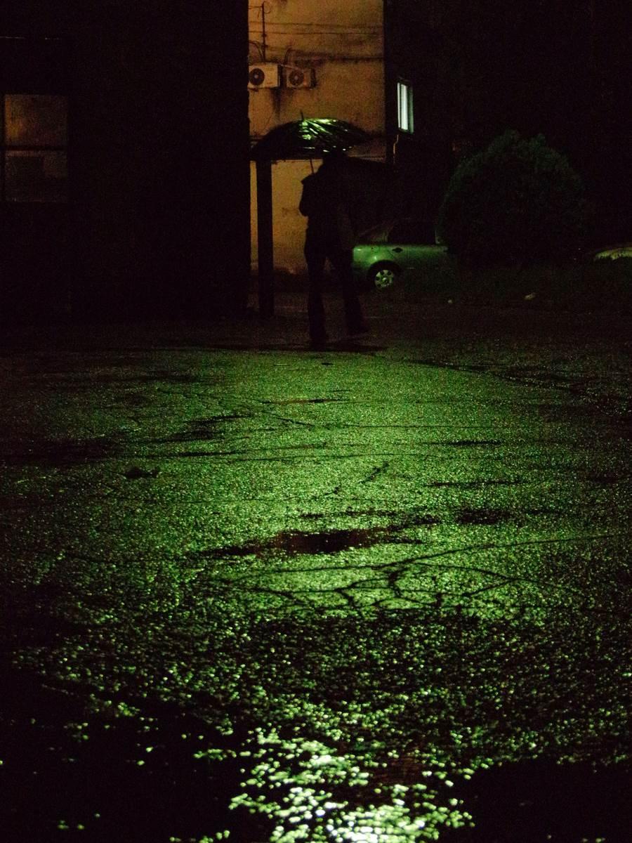 Green rainy place