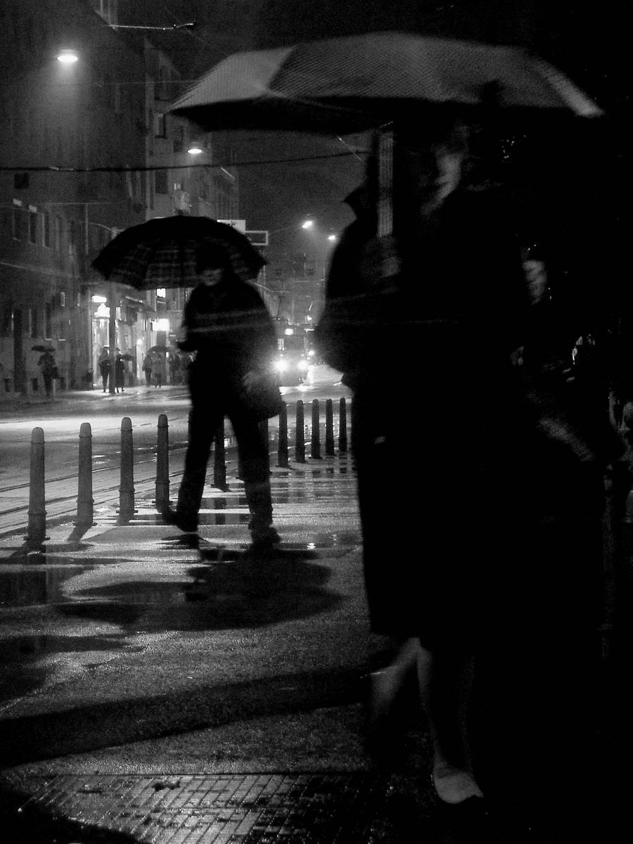 Rain Follower
